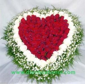 Hoa tình yêu HTY65