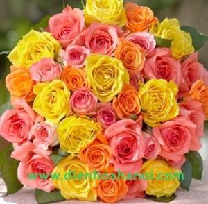 Hoa tình yêu HTY55
