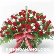 Hoa tình yêu HTY57