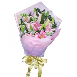 Hoa ly phớt hồng