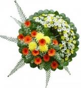 Hoa tang  lễ 03