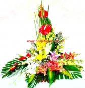 Hoa để bàn 11