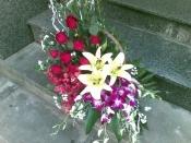 Hoa để bàn 17