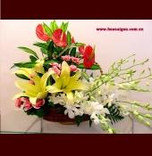 Hoa để bàn HDB 22