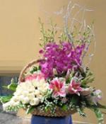 Hoa để bàn 30