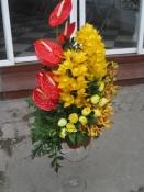 Hoa để bàn 35