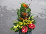 Hoa để bàn 34