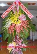 Hoa Vip 15