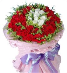 Hoa tình yêu 115