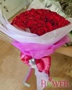 Hoa tình yêu 117