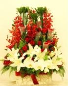 Hoa vip 21