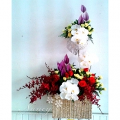 hoa vip 24