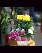 hoa tinh yêu 120
