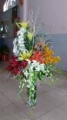 hoa vip 26