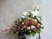 Hoa sinh nhật 91