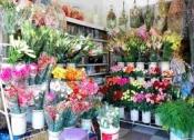 Điện hoa vị thủy, hoa tươi vị thủy, shop hoa tươi vị thủy hậu giang.