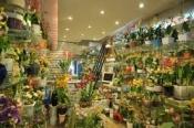 Điện hoa U Minh Thượng, hoa tươi U Minh Thượng, shop hoa tươi U Minh Thượng Kiên Giang.