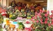 Điện hoa Hồng Dân, Hoa tươi Hồng Dân, Shop hoa tươi Hồng Dân tỉnh Bạc Liêu.