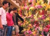 Điện hoa Long Phú, hoa tươi Long Phú, shop hoa tươi Long Phú Sóc Trăng.