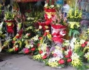 Điện hoa Trần Văn Thời, hoa tươi Trần Văn Thời, shop hoa tươi Trần Văn Thời Cà Mau.