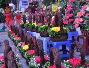 Điện hoa Kiên Lương, hoa tươi kiên lương, shop hoa tươi kiên lương kiên giang.