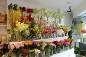 Điện hoa Phú Quốc, hoa tươi Phú Quốc, shop hoa tươi Phú Quốc kiên giang.