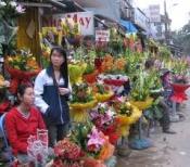 Điện hoa Cái Nước, Shop hoa Cái Nước, Hoa tươi Cái Nước Cà Mau.
