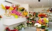 Điện hoa Ngã Năm, hoa tươi Ngã Năm, shop hoa tươi Ngã Năm Sóc Trăng.