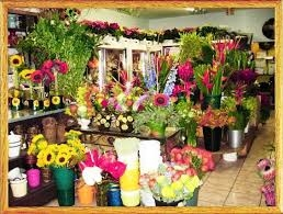 Điện hoa Hòa Thành, shop hoa Hòa Thành, hoa tươi Hòa thành tỉnh Tây Ninh.