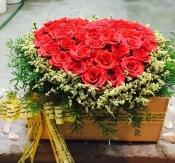 Hoa ngày lễ 47