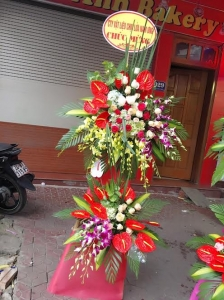 Hoa Khai Truong 29