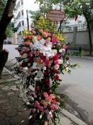 Hoa Vip 30